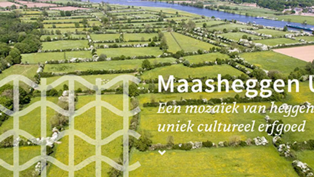 Maasheggen UNESCO